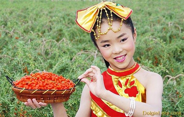 девушка из Тибета с ягодами Годжи