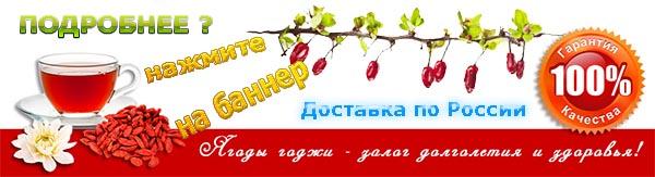 Купить Ягоды Годжи в интернет-магазине, доставка по России.