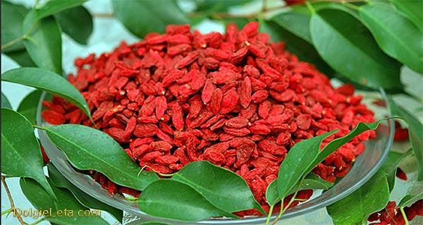 сушеные ягоды Годжи на тарелке окруженные листвой