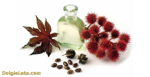 Употребление касторового масла при лечении