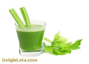 в стакане сок сельдерея: польза и вред напитка