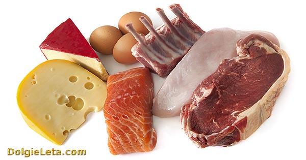 Продукты - мясо, сыр, рыба, яйца