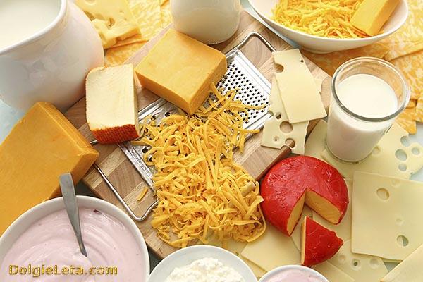 Продукты питания, содержащие белок: сыр, молоко, йогурт