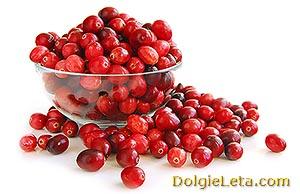 Полезная спелая ягода клюква в миске.
