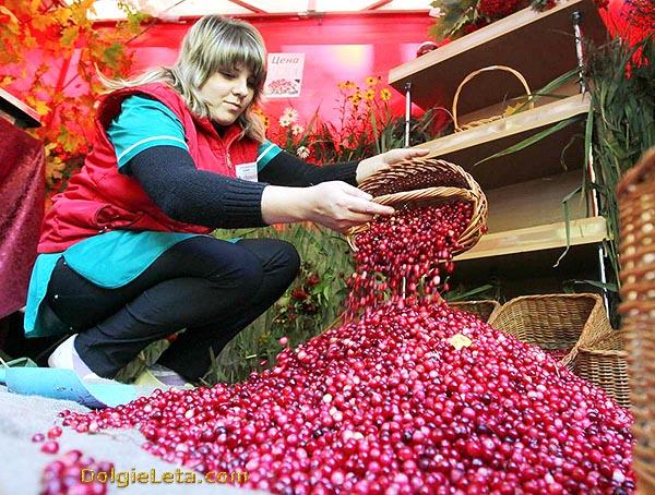 Перебранная ягода в продаже.