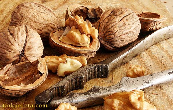 Чем и как правильно чистить грецкие орехи? - орехоколка.
