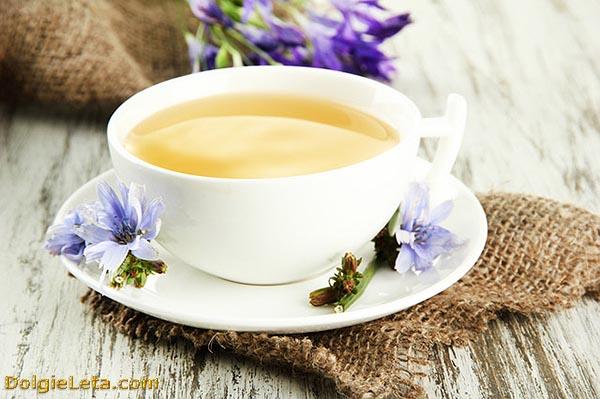 Чем полезен растворимый цикорий?