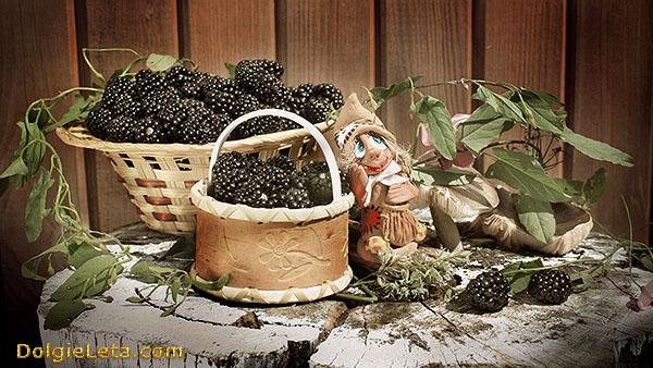Ежевика: полезные свойства и противопоказания к употреблению ягод.