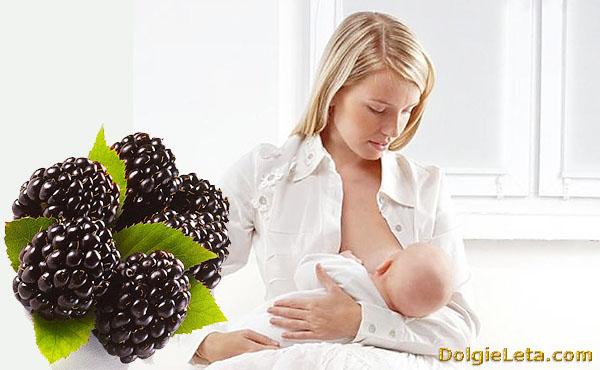 Употребление ежевики при беременности и во время кормления ребенка.