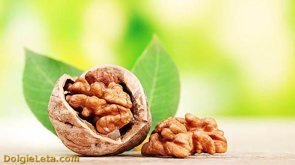 В каких  странах и где растут грецкие орехи.