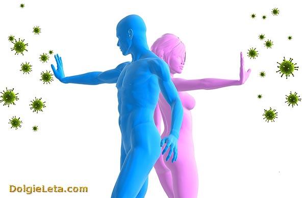 Как восстановить, повысить и укрепить иммунную систему организма человека.