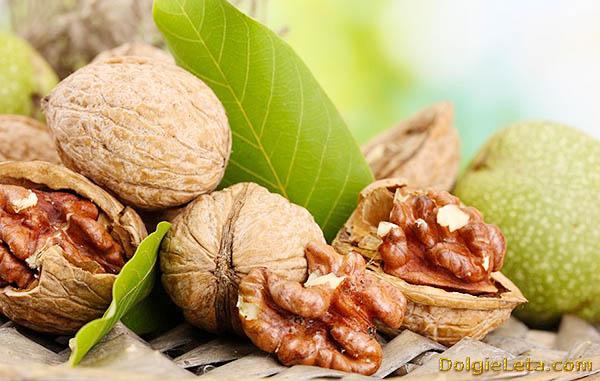 Полезные свойства грецкого ореха.