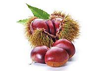 Плоды каштана: полезные свойства  и употребление.