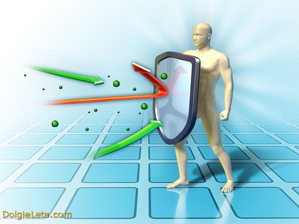 Лечение, повышение и укрепление иммунной системы организма человека.