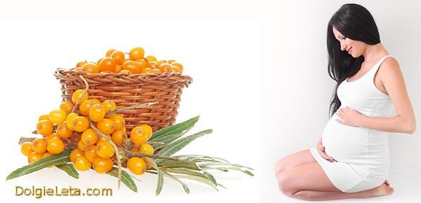 Употребление ягоды облепихи при беременности.