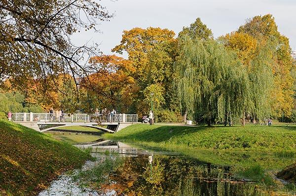 Осенний листопад. Пруд в Таврическом саду - фото.
