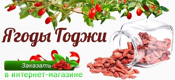 Отличия барбариса и Годжи - заказать и купить в магазине с доставкой по России.