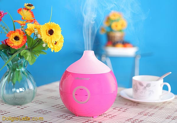 Для чего нужен увлажнитель воздуха в квартире - польза или вред от применения прибора.