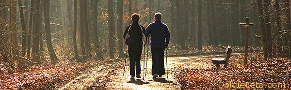 Противопоказания: скандинавская ходьба с палками - на фото пожилая пара удаляется по дорожке.