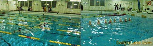 Занятия по плаванию с детишками в бассейне имени Лесгафта на улице Декабристов в СПб.