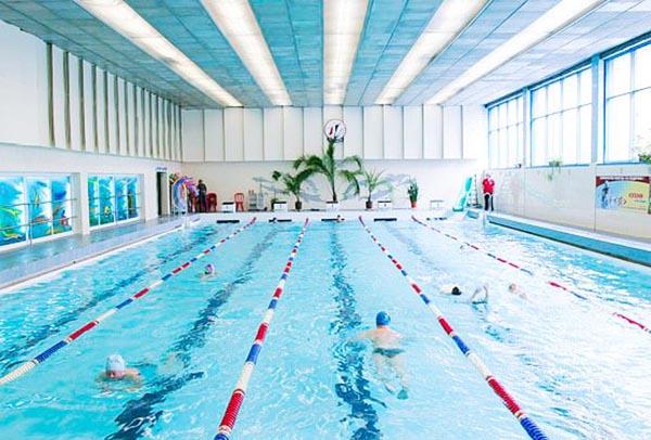 Плавцы занимаются плаванием в бассейне Петроградец - фото общего вида.