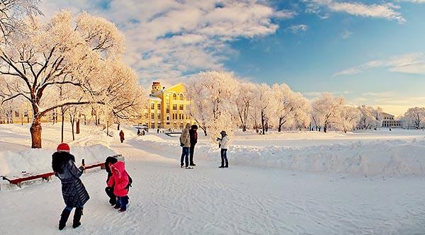 Юсуповский сад зимой в солнечную погоду.