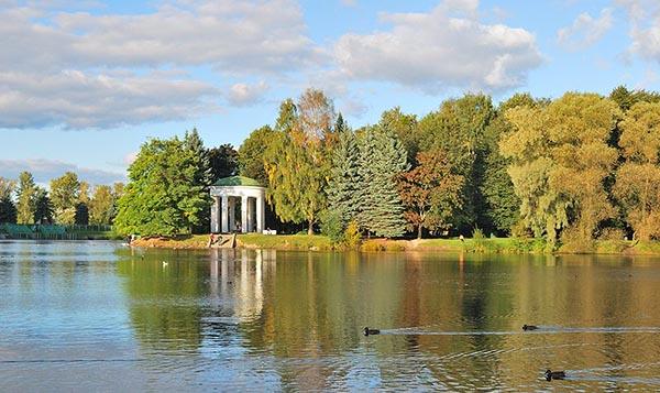 Пруд с утками в парке Екатерингоф в Санкт-Петербурге