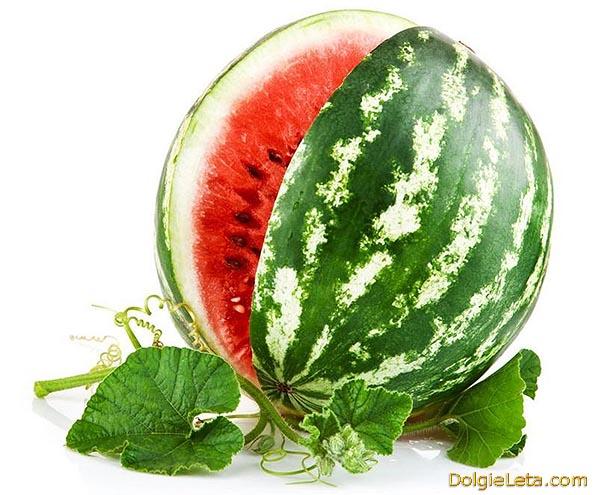 Польза спелого арбуза - полезные свойства ягоды.