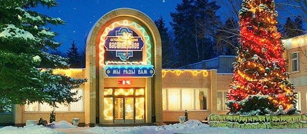 Главный вход в санаторий Васильевское - зима, нарядная елка.