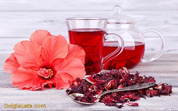 Чай каркаде - чем полезен, свойства, состав, показания и противопоказания напитка.