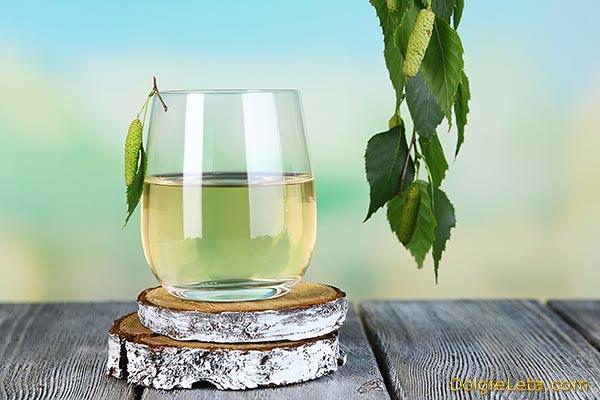 Полезные свойства березового сока: польза напитка и противопоказания.