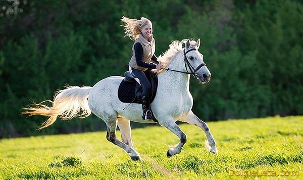 Девушка скачет галопом на белой лошади.