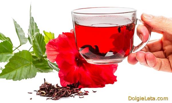 Чай каркаде: в какое время и как часто, правильно пить напиток.