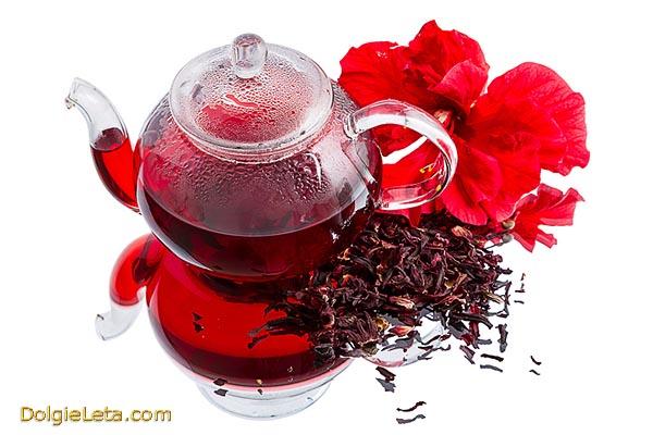 Каркаде - полезные свойства чая. Польза и вред напитка для здоровья.
