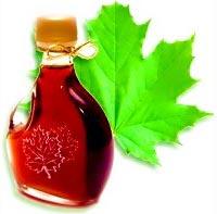 Кленовый сок: полезные свойства, показания и противопоказания к применению.
