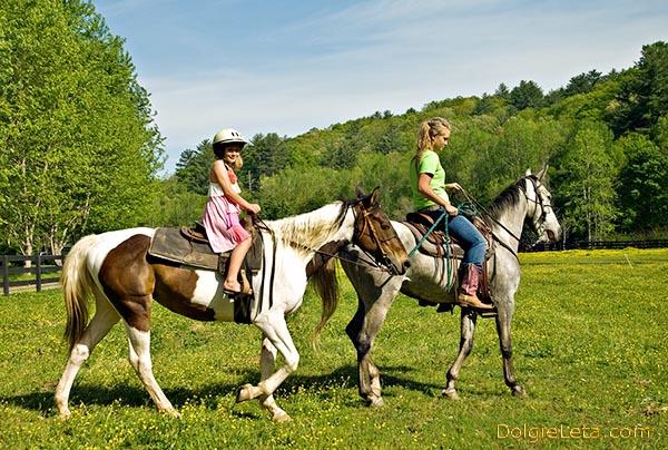 Полезные конные прогулки - семейные катания на лошадях.