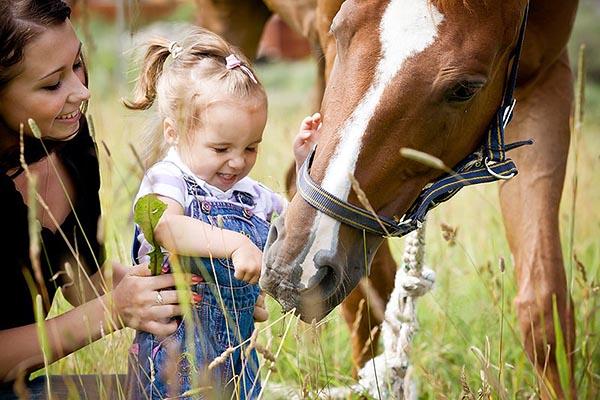 Мама с маленькой дочкой гладят лошадку.