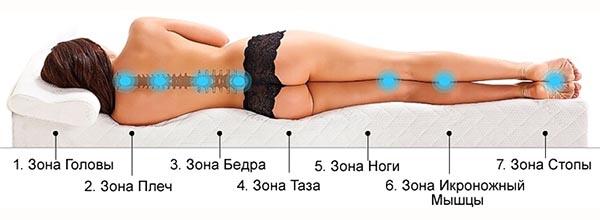 Как правильно выбрать ортопедический матрас - зоны тела человека