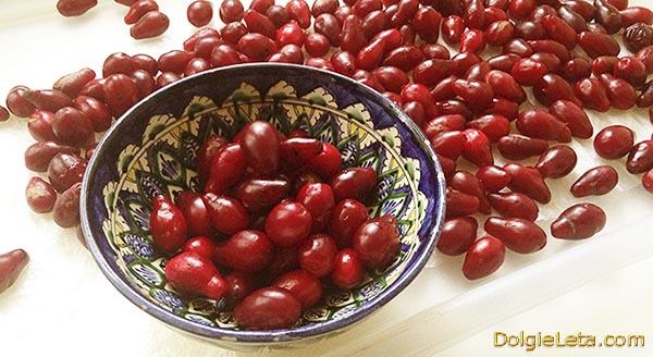 Польза спелых ягод кизил для организма.