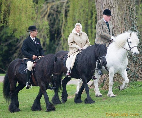 Пожилые люди катаются на лошадях - конные прогулки.