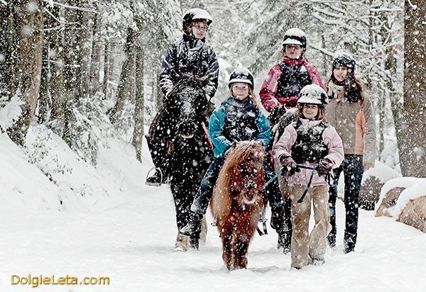 Зимние семейные катания на лошадях по заснеженным дорожкам.