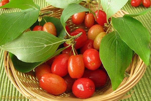Спелый кизил на тарелке - полезные свойства ягод.
