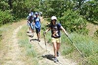 Группа людей занимается на природе ходьбой с палками.
