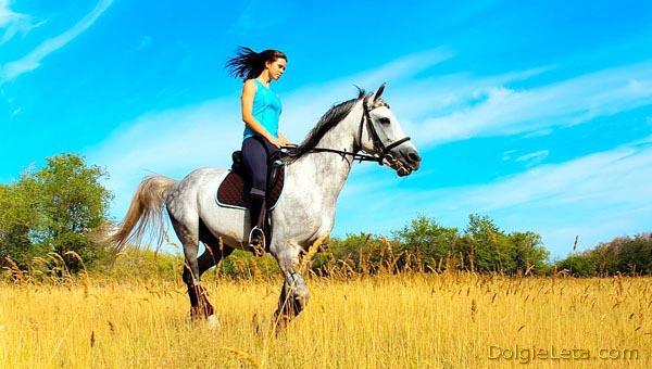 Девушка занимается конным спортом.