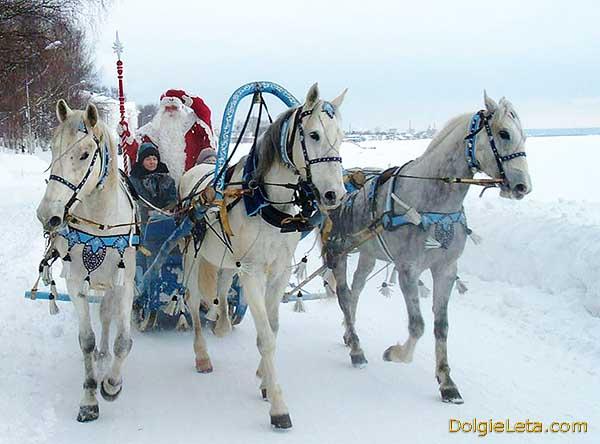 Дед Мороз катает детишек на тройке лошадей в новогодние зимние каникулы.