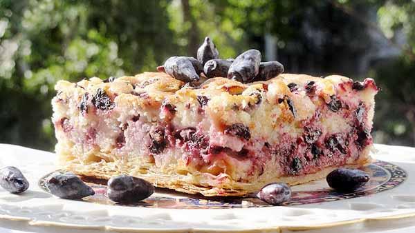 Торт с ягодами жимолости съедобной