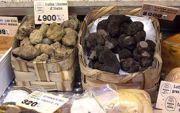 Грибы трюфели в продаже