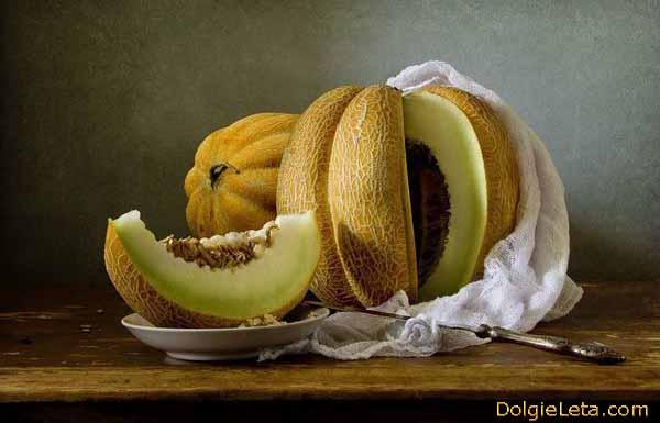 Красивое фото дыни - полезные свойства и противопоказания овоща.
