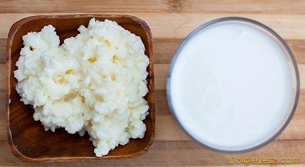 Молочный гриб: полезные свойства и противопоказания кефирного напитка - польза и вред для организма.