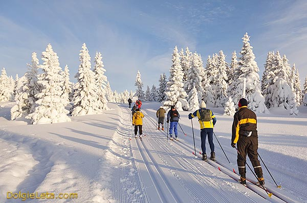 Лыжные прогулки на природе для похудения
